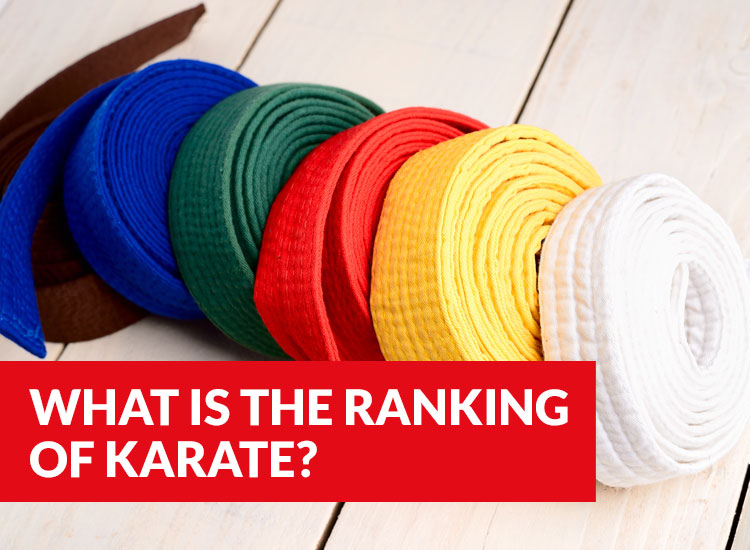 What Is The Order Of Belts In Karate